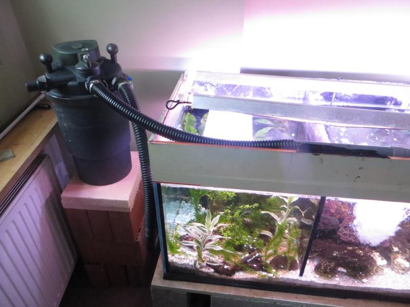 Aquarium TST 05_pom10