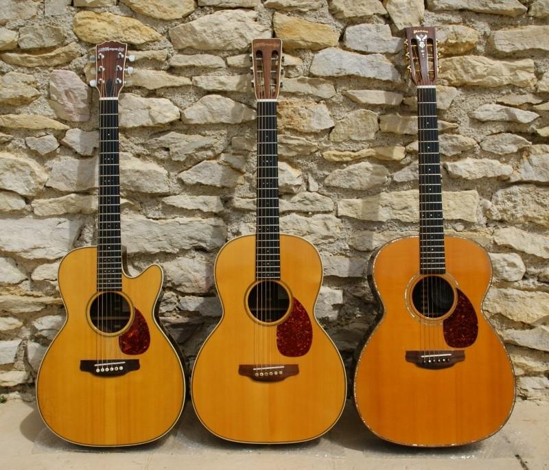 Les guitares de Andy Manson - Page 2 Dsc02010