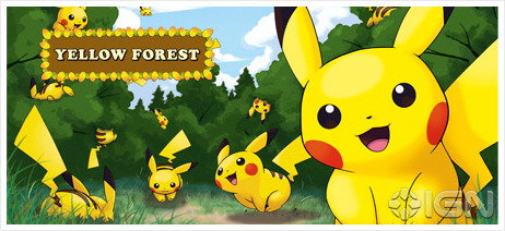 The Yellow Forest!
