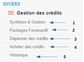 """P6 Découverte d'un forum le P.A onglet """"Divers"""" S1_ges10"""