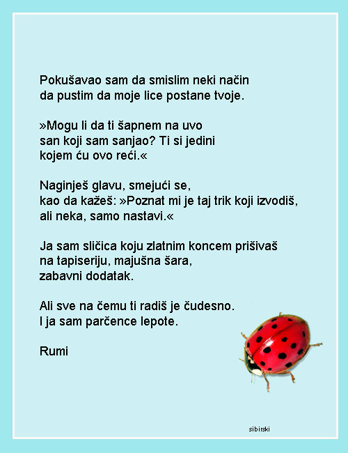 Upotrbljena romantika - Page 40 Rumi10