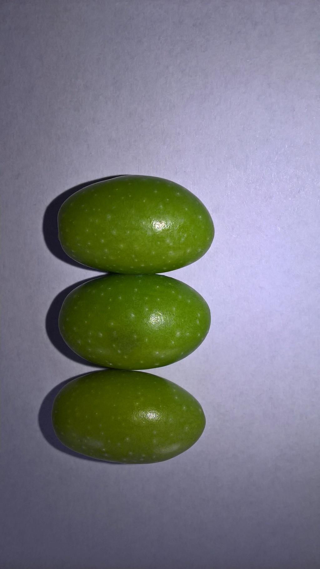 ¿Qué variedad son estos olivos? (Croacia) Wp_20131
