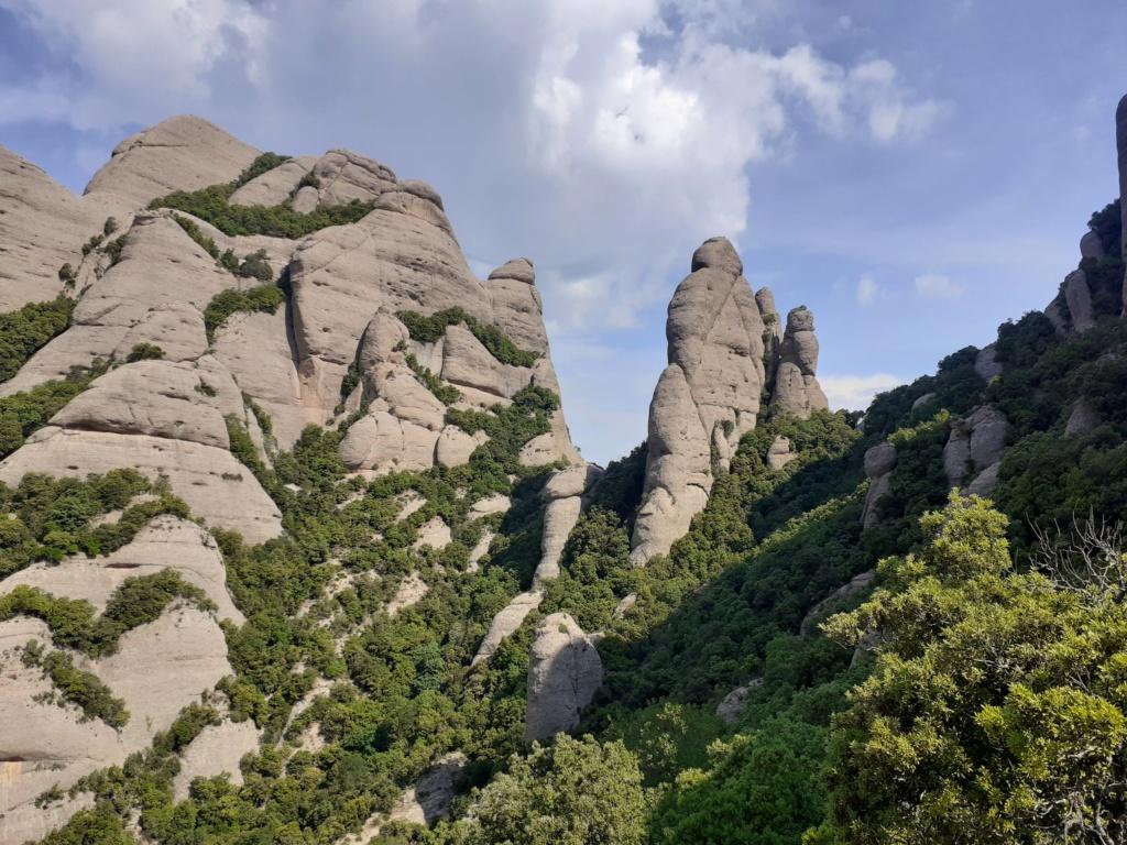 Topic:Deportes de Montaña..Escalada, Senderismo,Barranquismo....... - Página 9 20200610