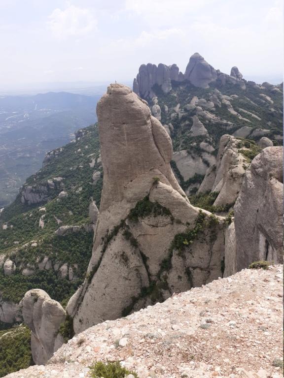 Topic:Deportes de Montaña..Escalada, Senderismo,Barranquismo....... - Página 9 20200611