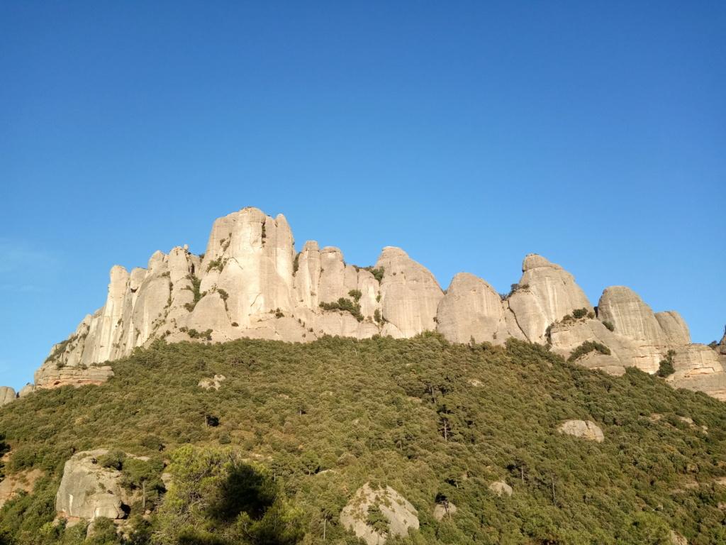 Topic:Deportes de Montaña..Escalada, Senderismo,Barranquismo....... - Página 16 Img_2052