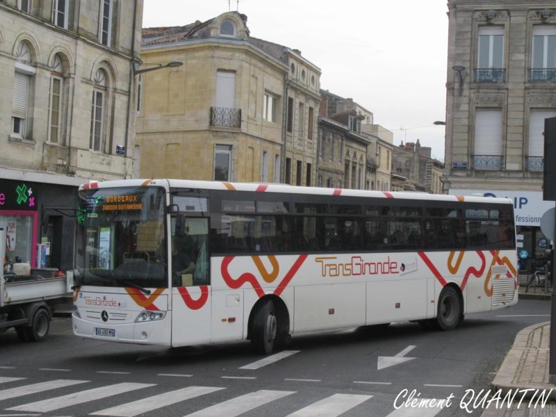 CITRAM AQUITAINE (Gironde) - Page 7 Img_4414