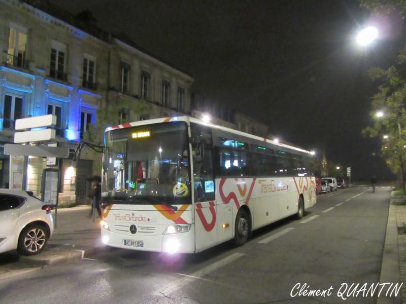 CITRAM AQUITAINE (Gironde) - Page 8 Img_4711