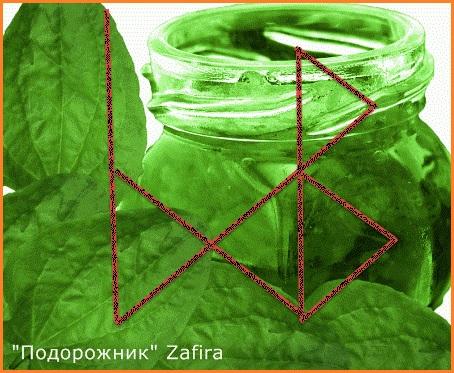 """""""Подорожник"""" Zafira 111114"""