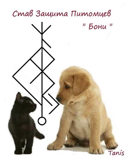 """Став Защита Питомцев """" Бони! """" . Автор Tanis Ea_oa_17"""