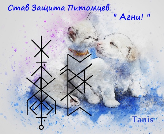 """Став Защита Питомцев """" Агни """" . Автор Tanis  Ea_oa_20"""