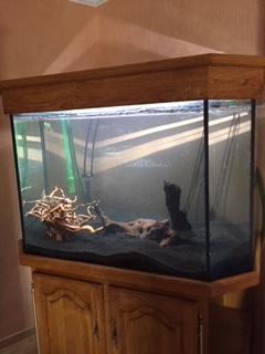 l'aquarium est arrivé ! Img_0111