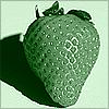 greenie strawberry