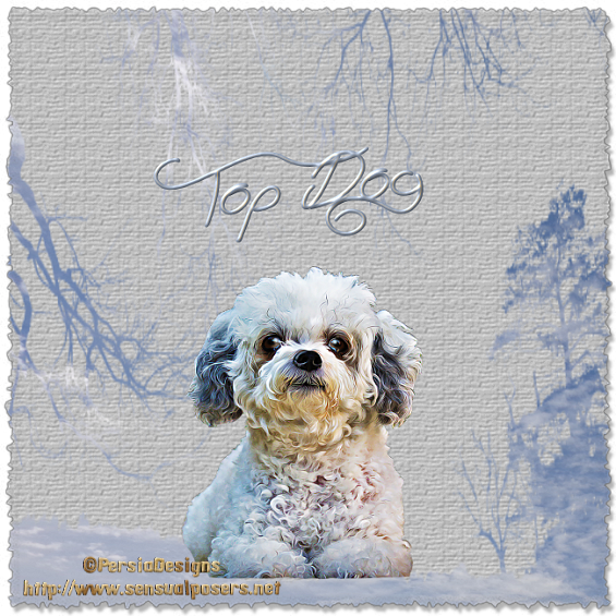 Top Dog - Page 6 1_5_1912
