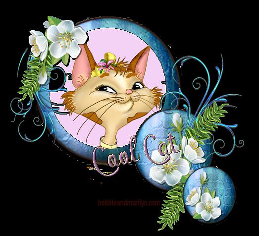 Top Cat 5coolc10