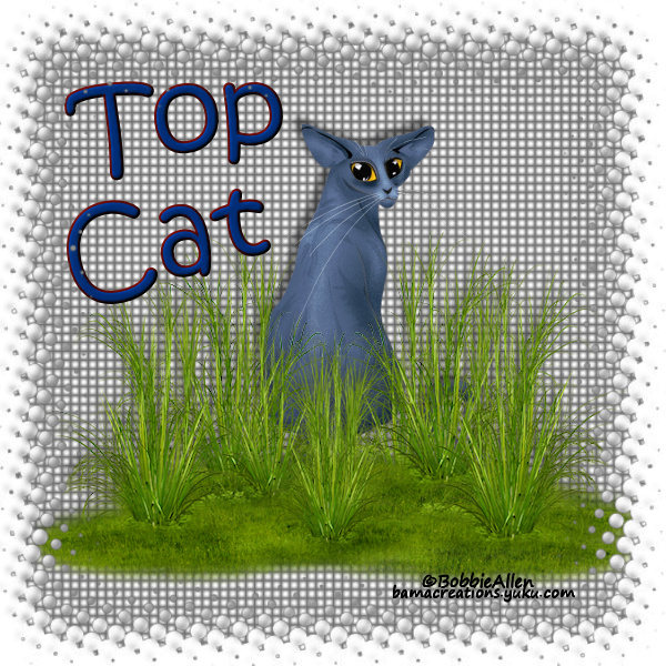Top Cat - Page 6 6tc1811