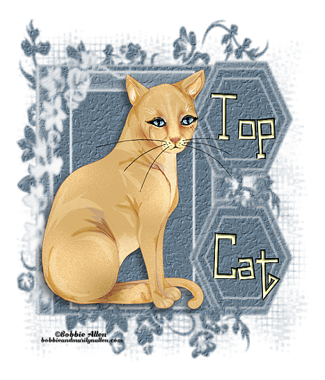 Top Cat - Page 2 7_2_tc14