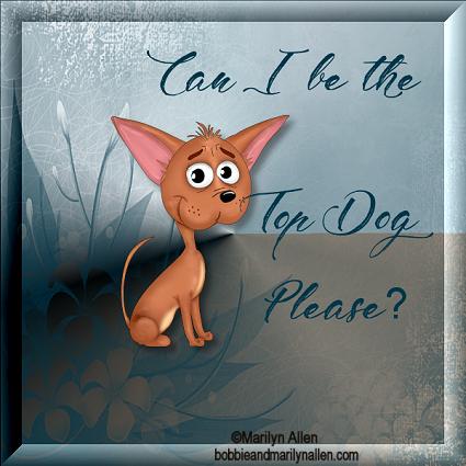 Top Dog - Page 3 7_2_tc17