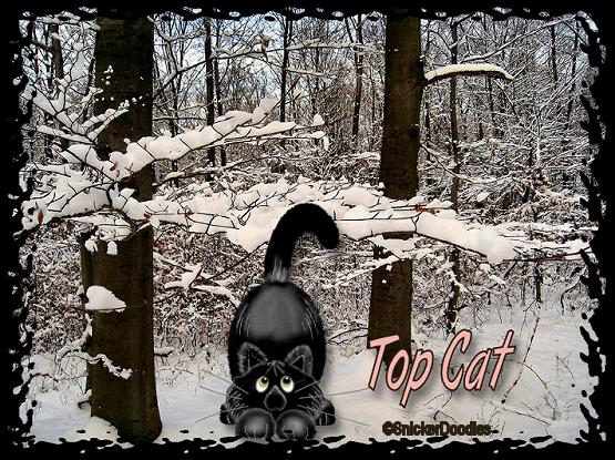Top Cat - Page 5 8_18tc11