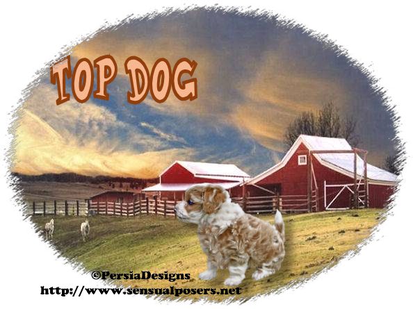 Top Dog - Page 5 9_29_115