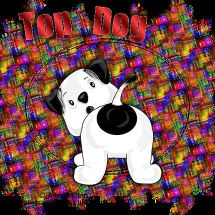 Top Dog Ba_top10