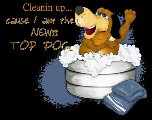 Top Dog Caruso10