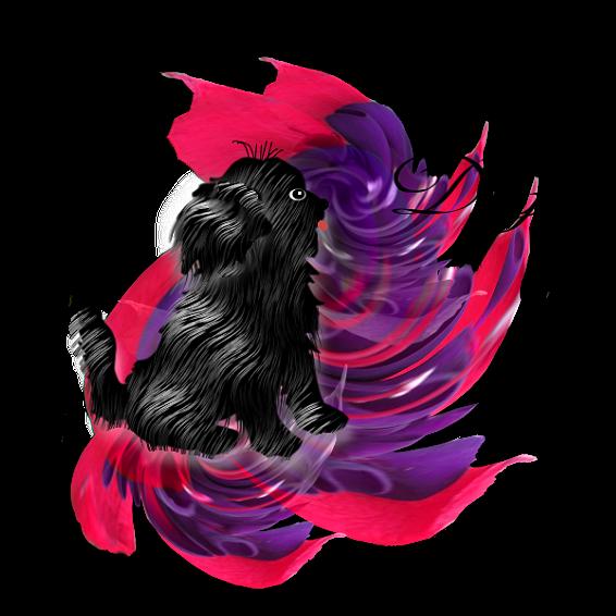 Top Dog Jjtopd10