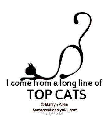 Top Cat Ma_ico10