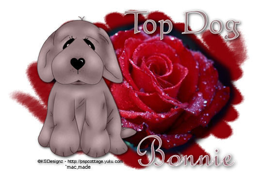 Top Dog - Page 3 Rosess11