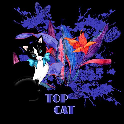 Top Cat Topcat10