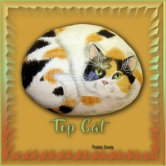 Top Cat Topcat12