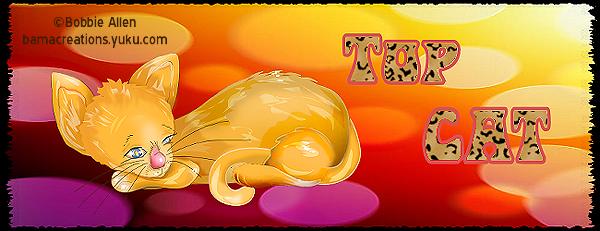 Top Cat - Page 4 Topcat17