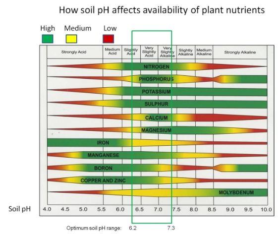 Bonsai soil questions/alternatives? Ph_rel10