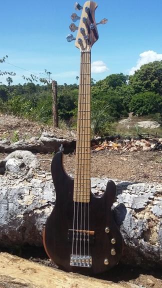 Meu MM com Luthier Santos Vista110
