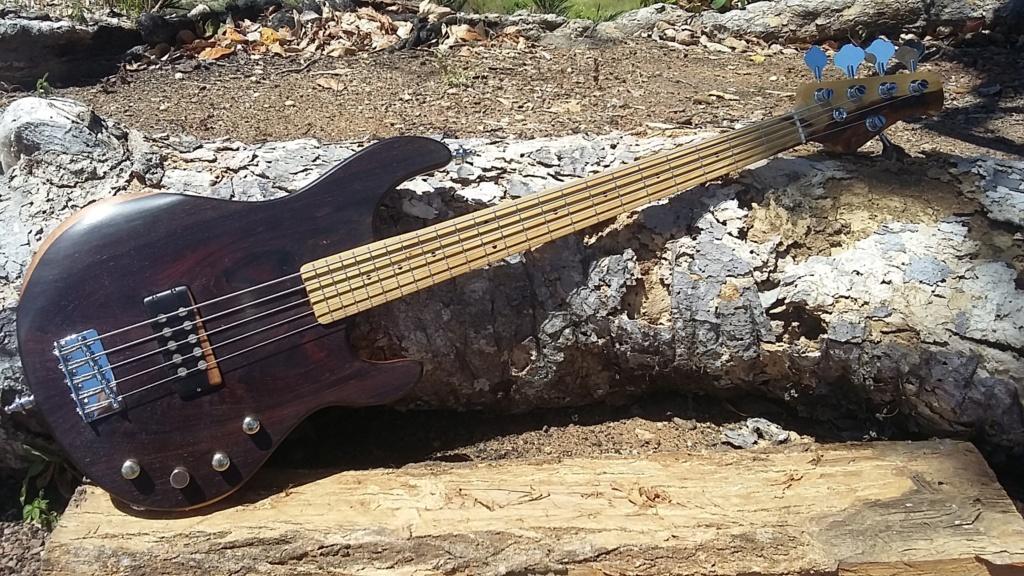 Meu MM com Luthier Santos Vista210