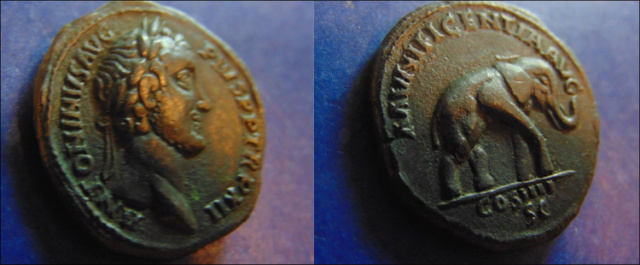 Antonin le Pieux vraie ou fausse pièce. 700_2p10