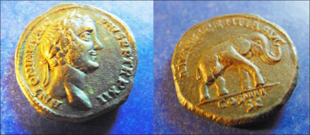 Antonin le Pieux vraie ou fausse pièce. 700px10
