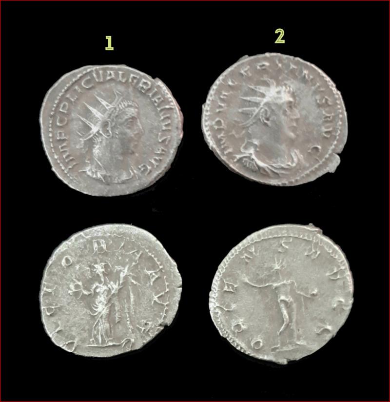 Antoninien, nom des empereurs Questi10