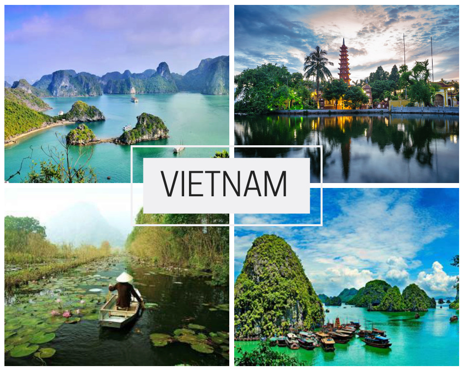 P2S Travel - Network by Léa Vietna10