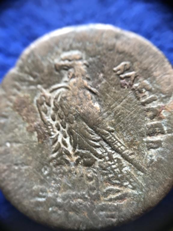 AE 30 de, Ptolomeo? busco Información Bronze12