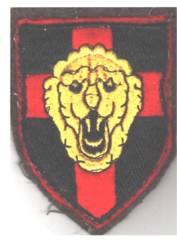 Écusson de la brigade Piron ? Unname12
