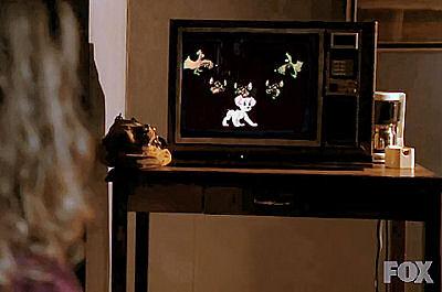 Series, videos y películas donde aparece Kimba. Fringe10