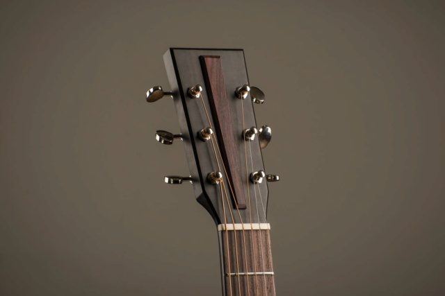 Blind guitars - Page 2 17084811