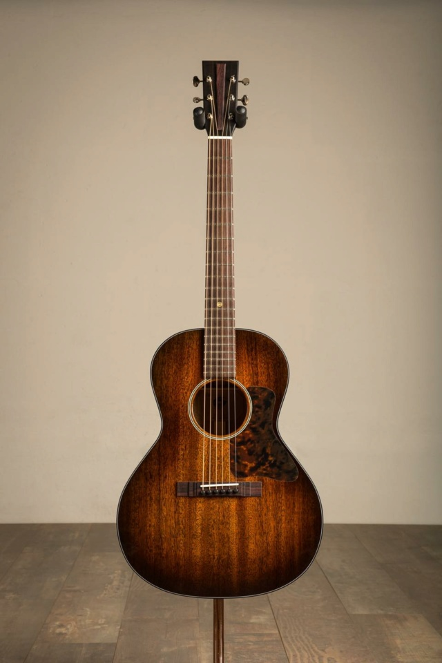 Blind guitars - Page 2 17117612