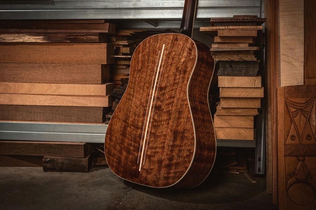 Blind guitars 72e21410