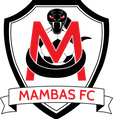 MAMBAS FC '10 BLK LOOKING TO ADD 5-6 NEW PLAYERS (PLANO) Blackm11