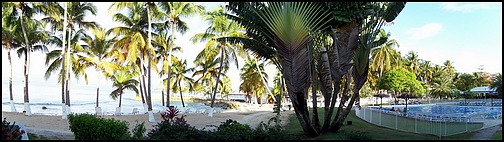 [Guadeloupe] Notre voyage de Noces 100_7411