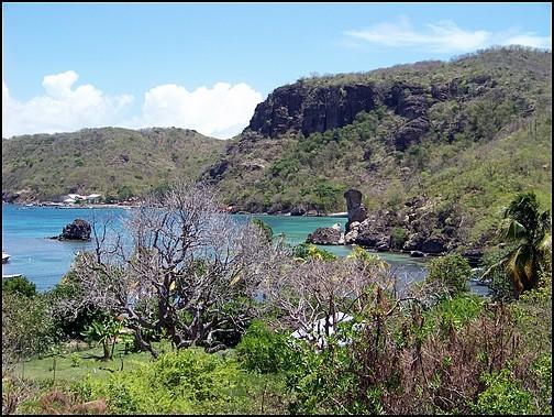 [Guadeloupe] Notre voyage de Noces 100_8028