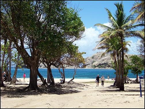 [Guadeloupe] Notre voyage de Noces 100_8029