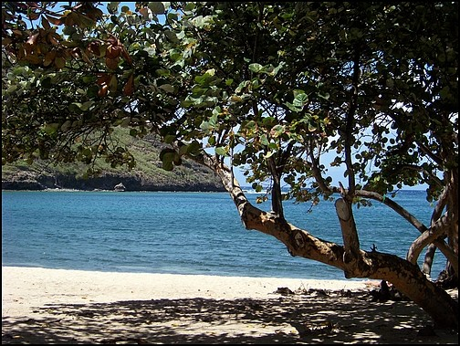 [Guadeloupe] Notre voyage de Noces 100_8030