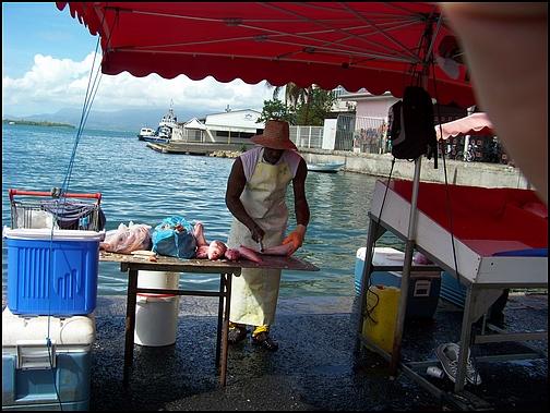 [Guadeloupe] Notre voyage de Noces 100_8115